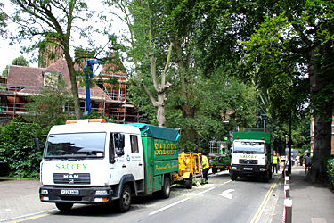 Accreditations Salcey Group Tree Care And Vegetation